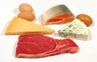 Питание белками